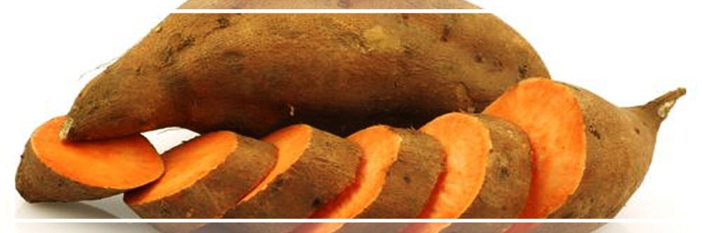 Camote (Boniato o Batata) [Beneficios y Propiedades] 4