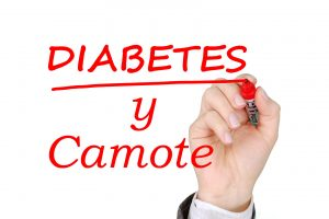 ¿Camote para Diabéticos? Conclusiones y Recetas 10